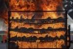 2,479 காண்டாமிருகத்தின் கொம்புகள் தீ வைத்து எரிப்பு
