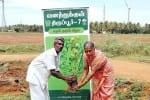 வனத்துக்குள் திருப்பூர் -7  திட்டம் 41,262  ஆயிரம் மரக்கன்றுகள்  நடவு