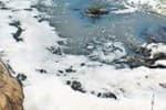 காவிரி ஆற்றில் மருத்துவ கழிவுகள்: ஆபத்து என ஐ.ஐ.டி., எச்சரிக்கை