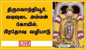 திருவொற்றியூர், வடிவுடை அம்மன் கோயில், பிரதோஷ வழிபாடு