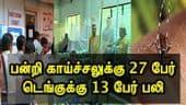 பன்றி காய்ச்சலுக்கு 27 பேர்:  டெங்குக்கு 13 பேர் பலி