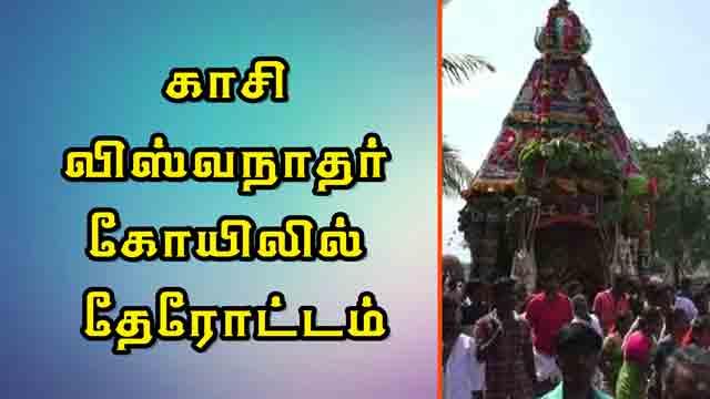 காசி விஸ்வநாதர் கோயிலில் தேரோட்டம்
