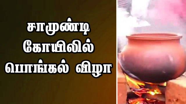 சாமுண்டி கோயிலில் பொங்கல் விழா