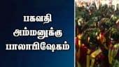 பகவதி அம்மனுக்கு பாலாபிஷேகம்