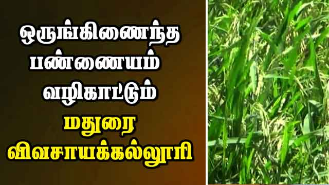 ஒருங்கிணைந்த பண்ணையம்  வழிகாட்டும் மதுரை விவசாயக்கல்லூரி | Integrated farming | Agri College | Madurai | Dinamalar