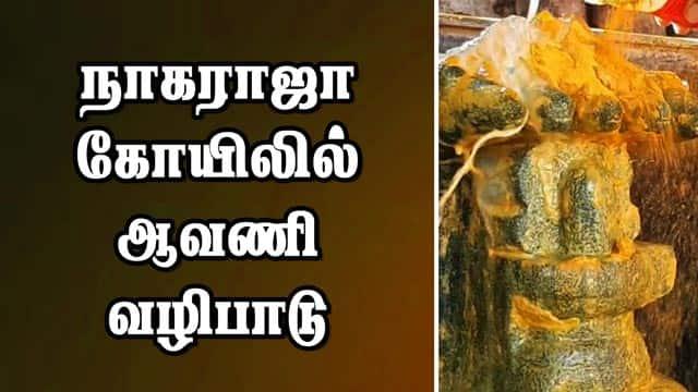 நாகராஜா கோயிலில் ஆவணி வழிபாடு