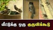 வீட்டுக்கு ஒரு குருவிக்கூடு | Sparrow House | Madurai | Dinamalar