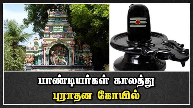 பாண்டியர்கள் காலத்து புராதன கோயில் | Sivan Temple | Avaniyapuram | Madurai | Dinamalar