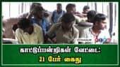 காட்டுப்பன்றிகள் வேட்டை : 21 பேர் கைது