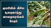 குமரியில் வீசிய சூறைகாற்று: வாழைமரங்கள் சேதம்