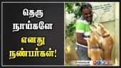 தெரு நாய்களே… எனது நண்பர்கள்! | Street Dogs Maintenance | Madurai | Dinamalar |