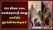 250 கிலோ எடை பயங்கரவாதி கைது; லாரியில் தூக்கிச்சென்றனர்