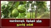 கொய்யாவும், தேக்கும் தந்த நபார்டு வங்கி | Guava | Teak  | Nabard Bank | Madurai | Dinamalar |