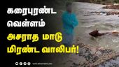 நடந்தது என்ன? திக் திக் வீடியோ | Nivar cyclone | Cyclone update | Cyclone 2020 | Dinamalar |