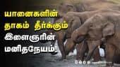 பத்து கிராமங்களில் பயிருக்கும் உயிருக்கும் பாதுகாப்பு    Elephant   Drinking water pond   Kovai   Dinamalar  