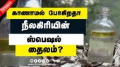 காணாமல் போகிறதா நீலகிரியின் ஸ்பெஷல் தைலம்?
