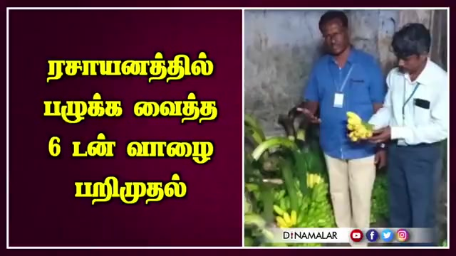 ரசாயனத்தில்  பழுக்க வைத்த 6 டன் வாழை பறிமுதல்