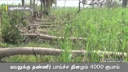 வயலுக்கு தண்ணீர் பாய்ச்ச தினமும் 4000 ரூபாய்