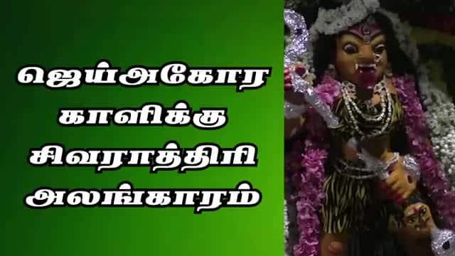 ஜெய்அகோர காளிக்கு சிவராத்திரி அலங்காரம்