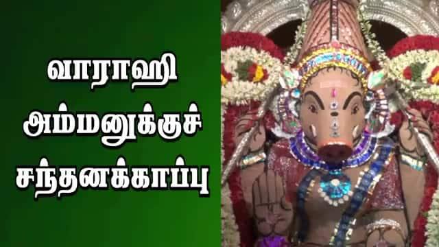 வாராஹி  அம்மனுக்குச்  சந்தனக்காப்பு