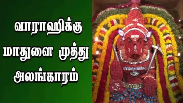 வாராஹிக்கு மாதுளை முத்து  அலங்காரம்