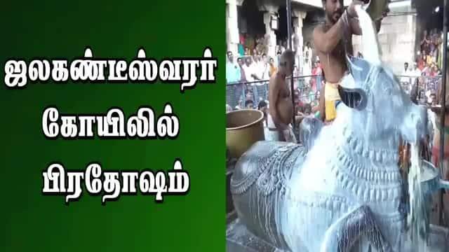 ஜலகண்டீஸ்வரர்  கோயிலில்  பிரதோஷம்