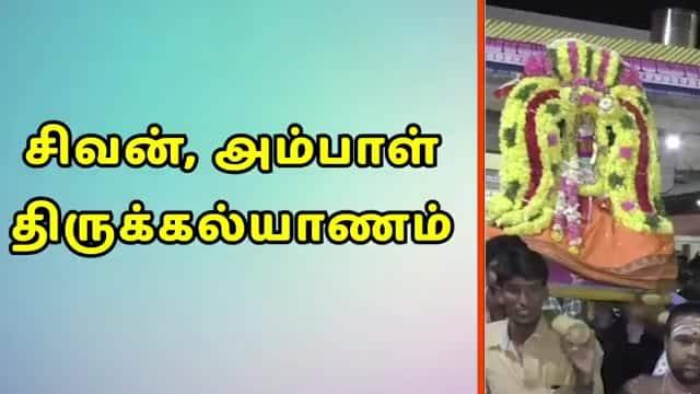 சிவன், அம்பாள் திருக்கல்யாணம்