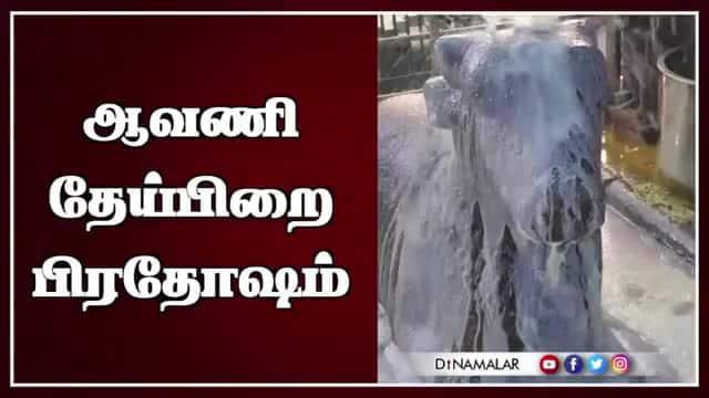 ஆவணி தேய்பிறை பிரதோஷம்