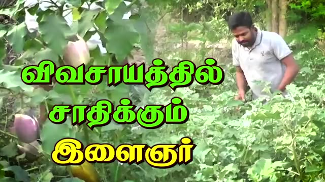 விவசாயத்தில் சாதிக்கும்  இளைஞர்