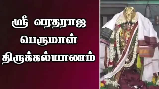 ஸ்ரீ வரதராஜ பெருமாள் திருக்கல்யாணம்