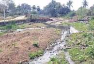 ரியல் எஸ்டேட்டால் கபளீகரமான மணிமங்கலம் ஏரி உபரிநீர் கால்வாய்