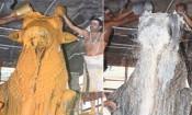 திருவண்ணாமலை அருணாசலேஸ்வரர் கோவிலில் பிரதோஷ வழிபாடு