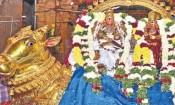 மதுரை மீனாட்சி அம்மன் கோயில் மாசி திருவிழா