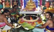 செம்மங்குடி அகஸ்தீஸ்வரர் கோயிலில் மகா கும்பாபிஷேகம்