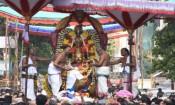 திருவல்லிக்கேணி பார்த்தசாரதி கோவிலில் கருட சேவை