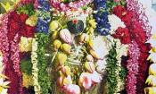 காலபைரவர் கோவிலில் தேய்பிறை அஷ்டமி பூஜை