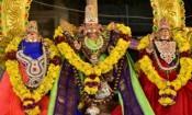 மருதமலை சுப்பிரமணியசுவாமி கோவிலில் குவிந்த பக்தர்கள்