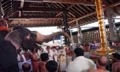 குருவாயூர் கோவில் உற்சவம் யானைகள் ஓட்டத்துடன்
