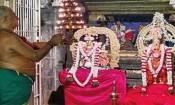 திருநெல்வேலி நெல்லையப்பர் கோயிலில் ஆனி 2ம் திருவிழா