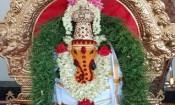 செல்வ விநாயகர் கோவிலில் கும்பாபிஷேக ஆண்டு விழா
